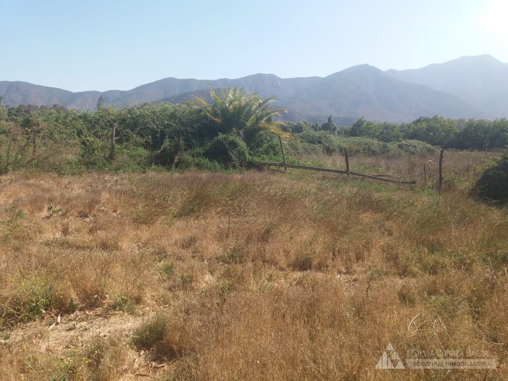 Santa Elena sector los Huertos